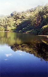 No Bottom Pond Sanctuary