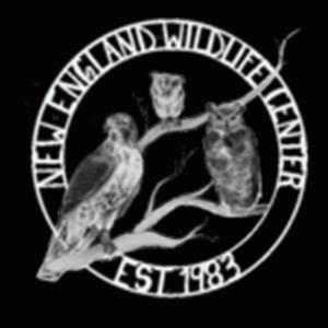 Cape Wildlife Center - Logo
