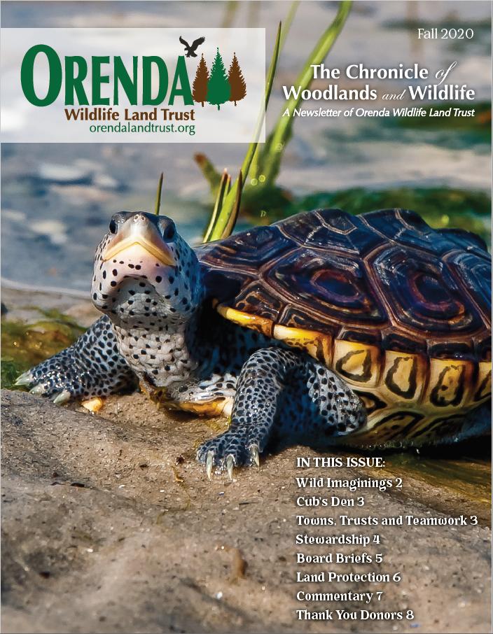 Orenda's Fall 2020 Newsletter