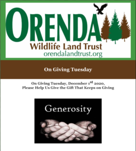 Orenda Holiday 2020 Newsletter