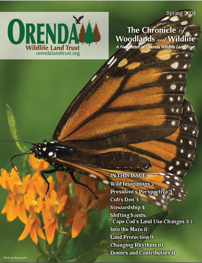 Orenda Spring 2021 Newsletter