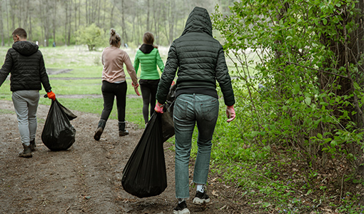 group of volunteers with garbage bags are cleaning the forest.