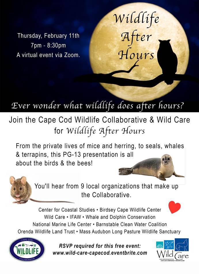 Wildlife Event