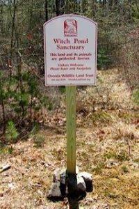 Witch Pond