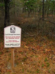 Carl Monge Sanctuary