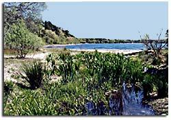 Ashumet Pond, Mashpee - 2