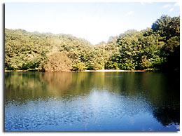 No Bottom Pond Sancturay, Brewster